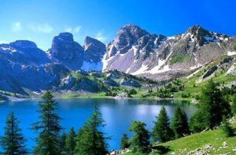 растительный мир парка удивителен